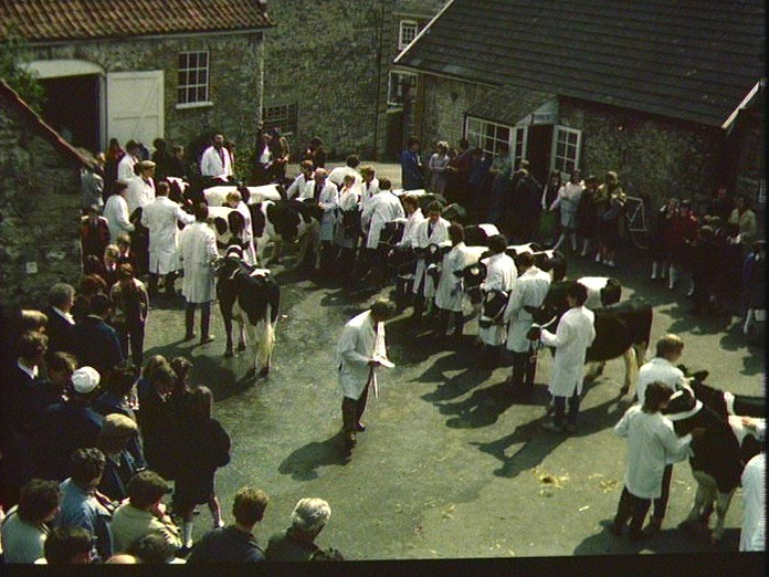 Young Farmer's Show and Sale-1986