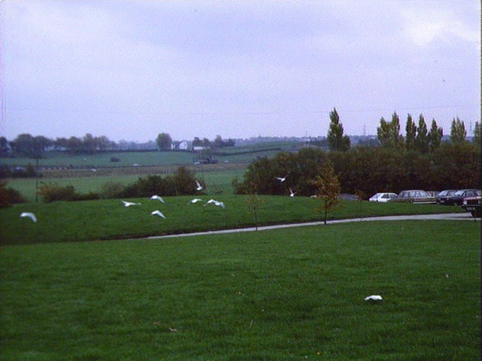 RURAL VIEW LOOKING EAST.-1986