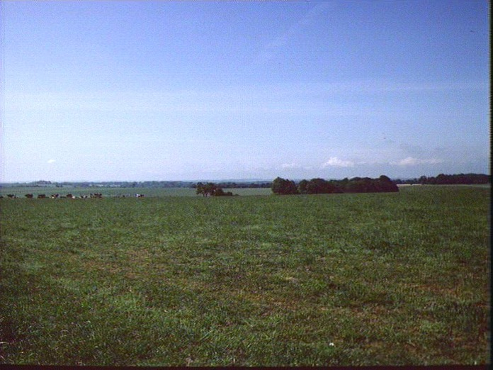 View of Tarrant Valley from SW-1986