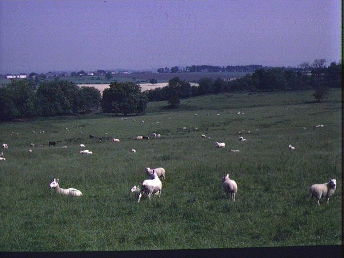 Slaley Village from the south.-1986
