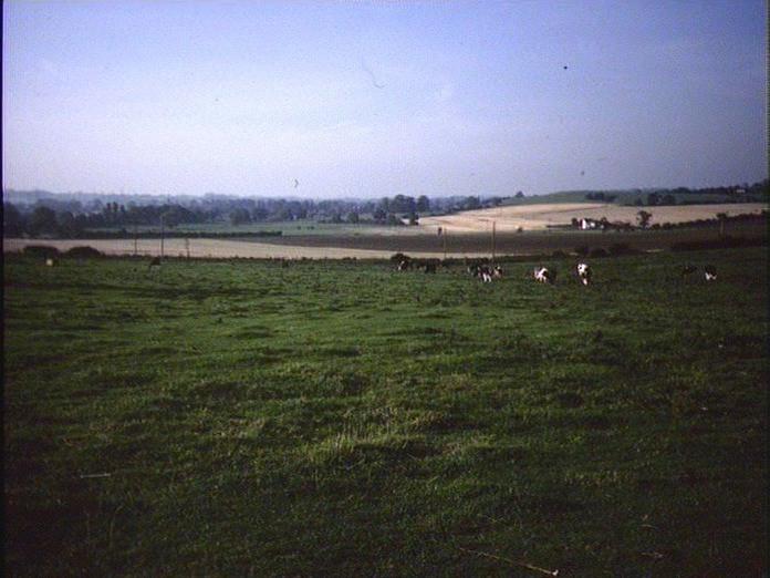 FARMLAND, COLTON AND RUGELEY-1986