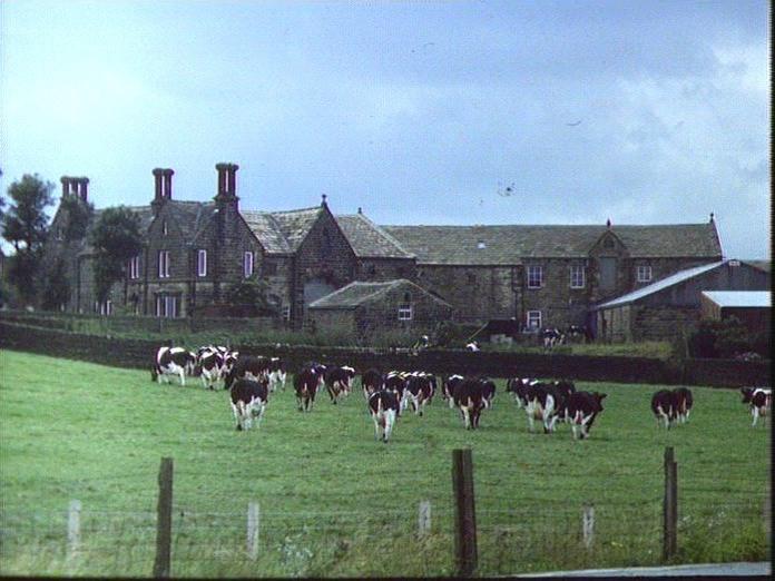 TARN HO. FARM,STEETON MOOR-1986