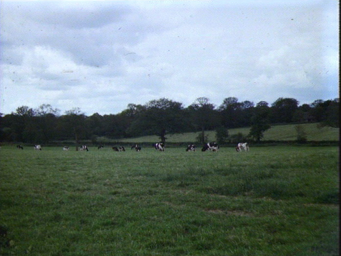 Countryside around Earlswood-1986