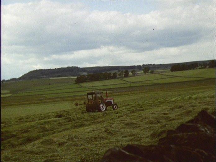 WARDLOW FARMING LANDSCAPE-1986