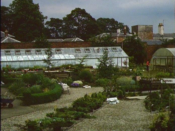 The garden centre, Grangewood-1986