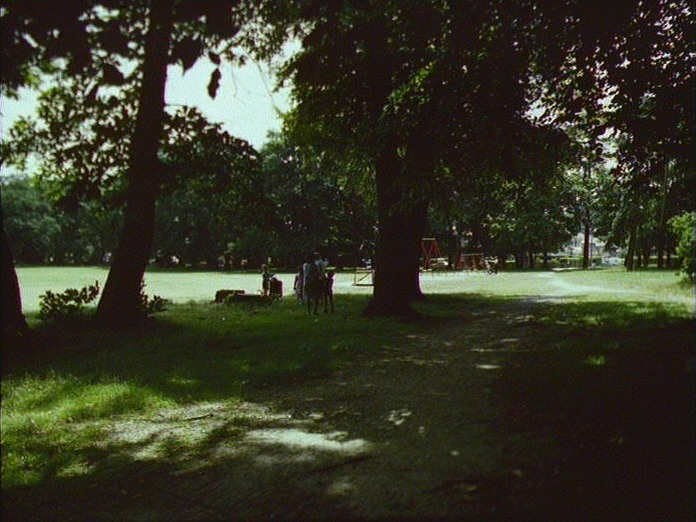 Freemantle Common.-1986