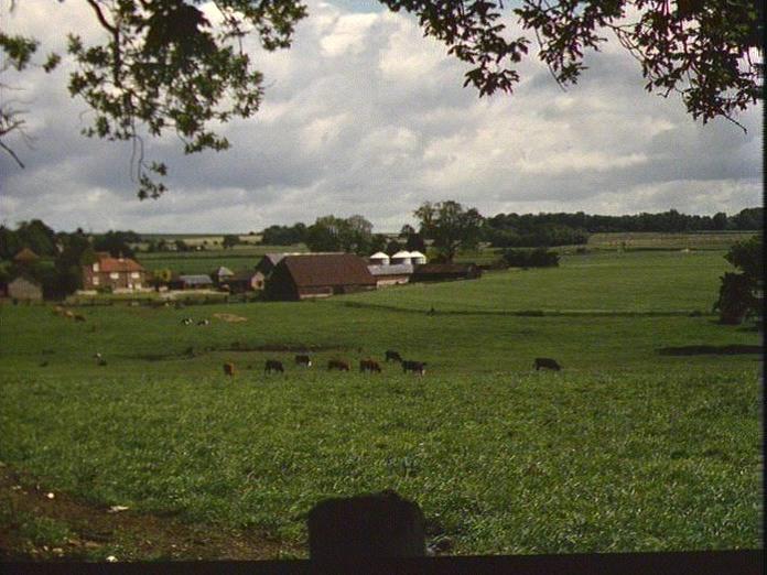 Pyle Farm, Horndean-1986