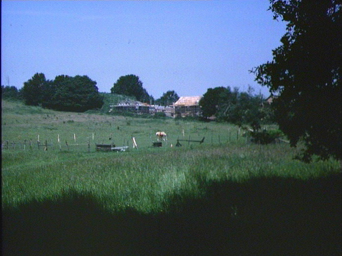 Paddocks soon to disappear-1986
