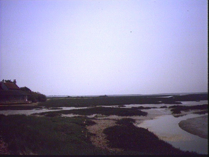 Pagham Harbour Nature Reserve-1986