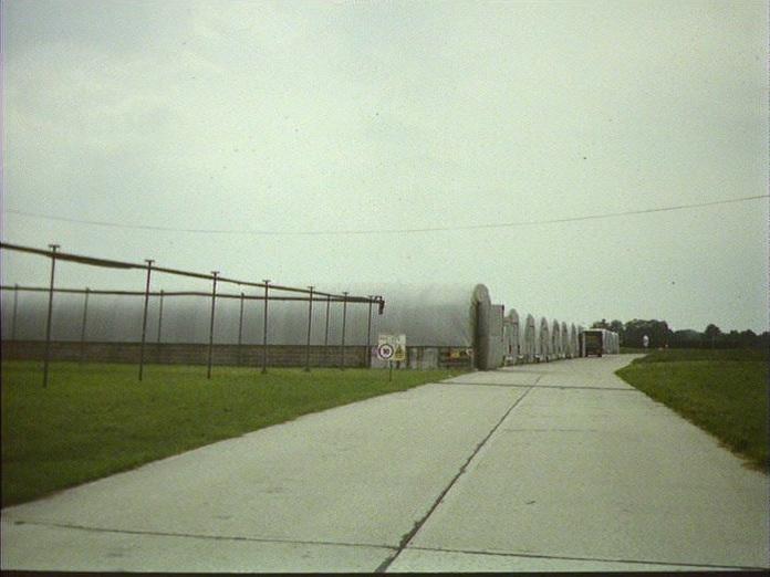 DARLINGTON'S MUSHROOMS,POLING.-1986