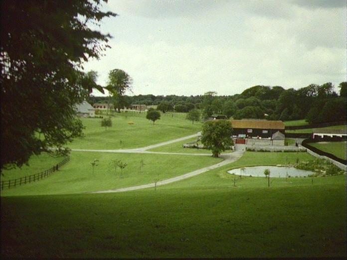 ANGMERING PARK STUD FARM.-1986