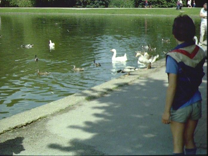 VERULAMIUM LAKE-1986