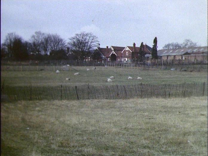 COLLEGE FARM-1986