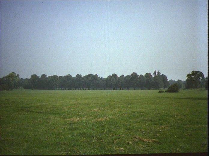 Foots Cray Meadows.-1986