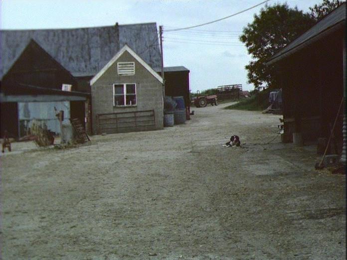 GT.PORTER'S FARM FARMYARD-1986