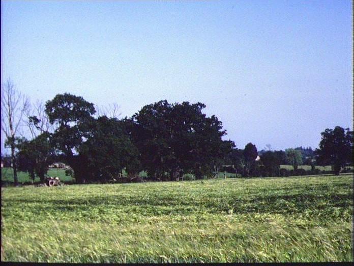 CLOPTON FARMLAND-1986