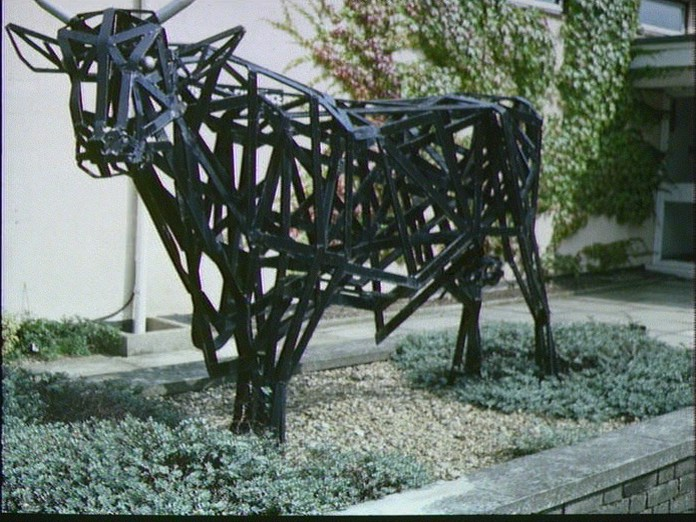 METAL COW AT OTLEY COLLEGE-1986