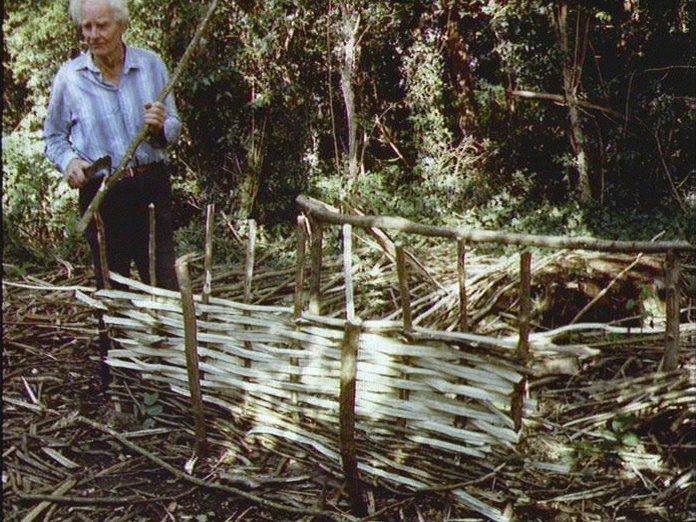 Dorset hurdle-maker at work.