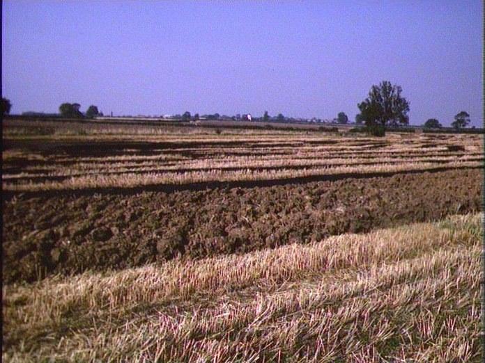 Farmland near Gretton